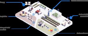 offer-farm