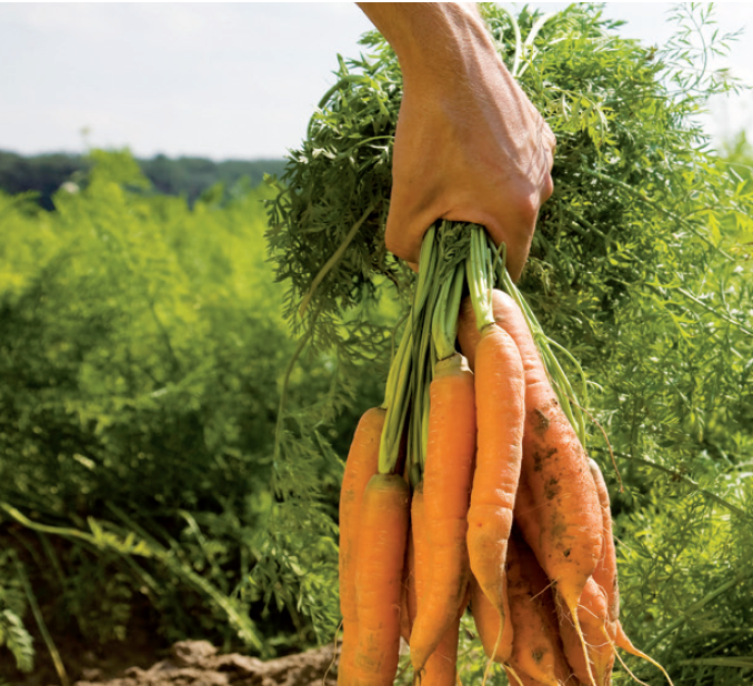 Prodej místních zemědělských produktů není věda, ale zákony je dobré znát uvádí Eva Svobodová