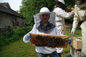 AnnKas včelí farma